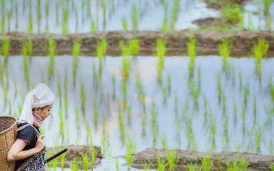Las tribus de Laos, visita obligada