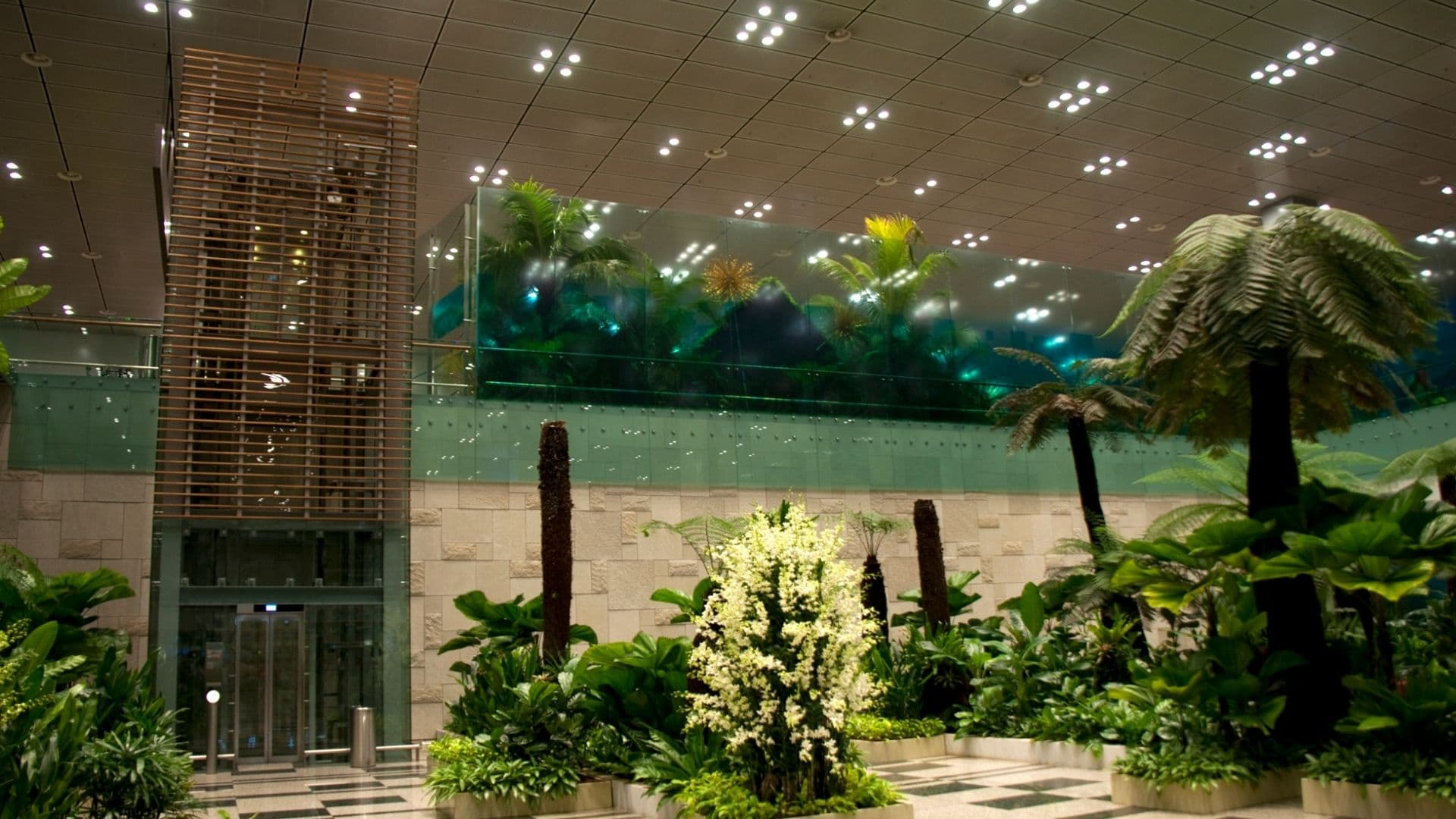aeropuerto de singapur changi