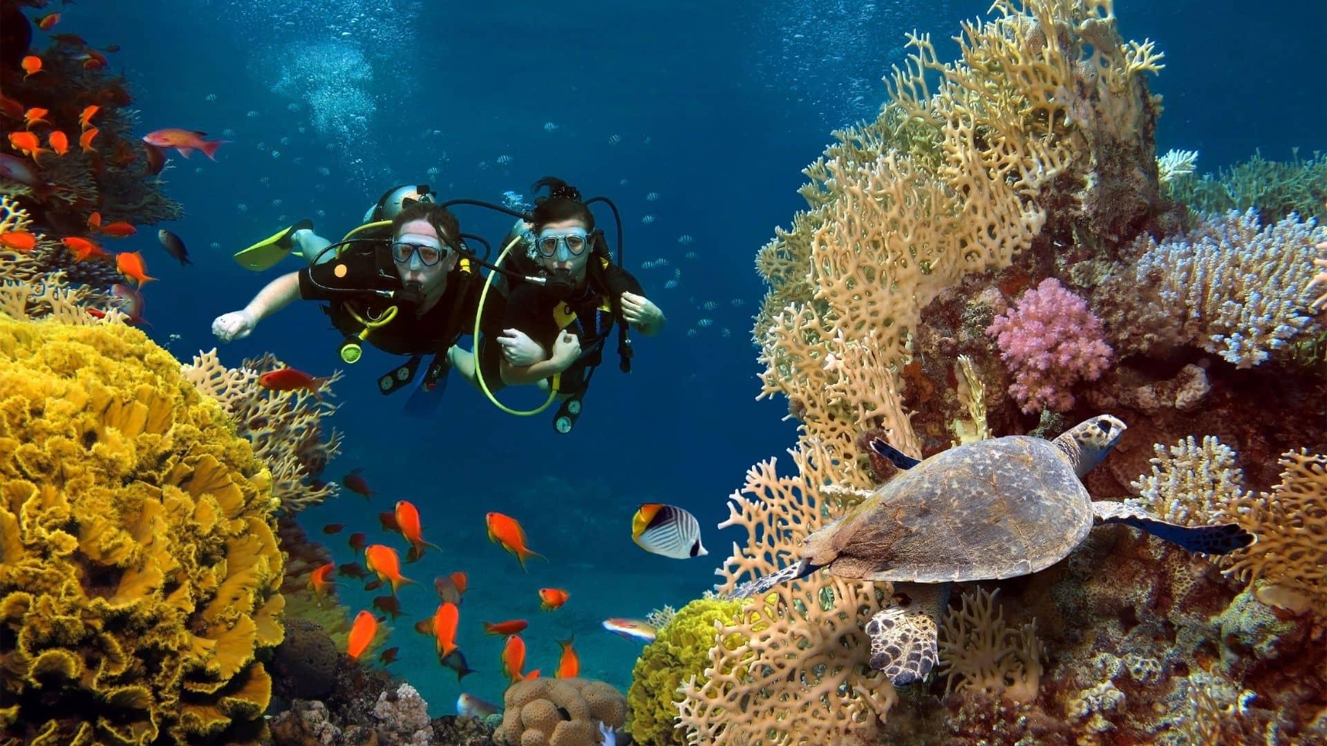 Viaja a Maldivas y disfruta de actividades acuáticas