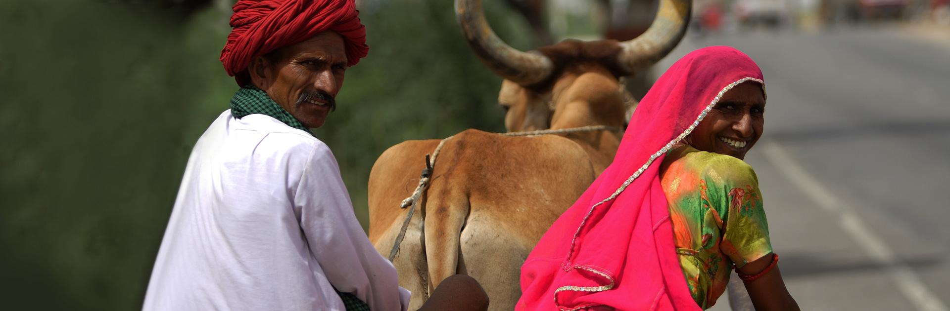 IN Rajasthan Especial 9 días 2