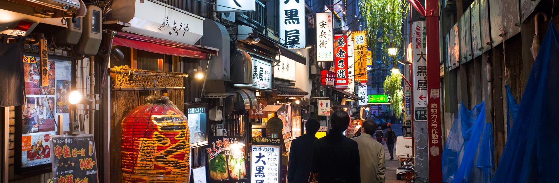 Japón por Libre 12 días 2