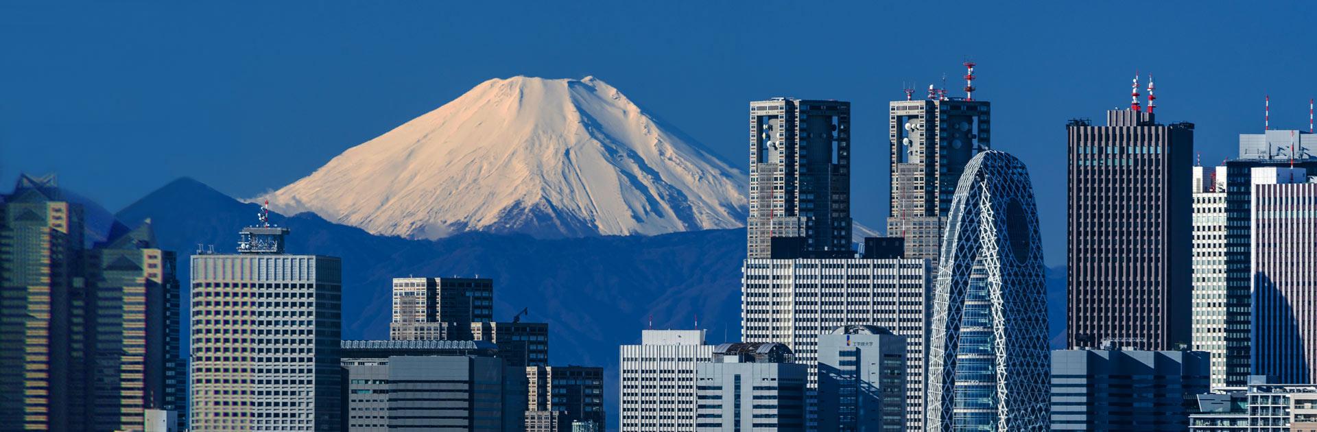 Konnichiwa Japón 8 días 12