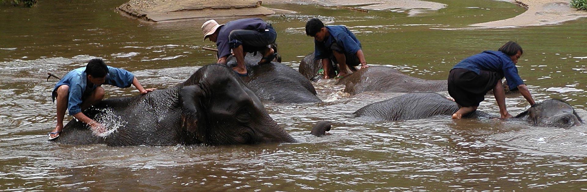TH Descubriendo el Norte de Tailandia 10 días 3