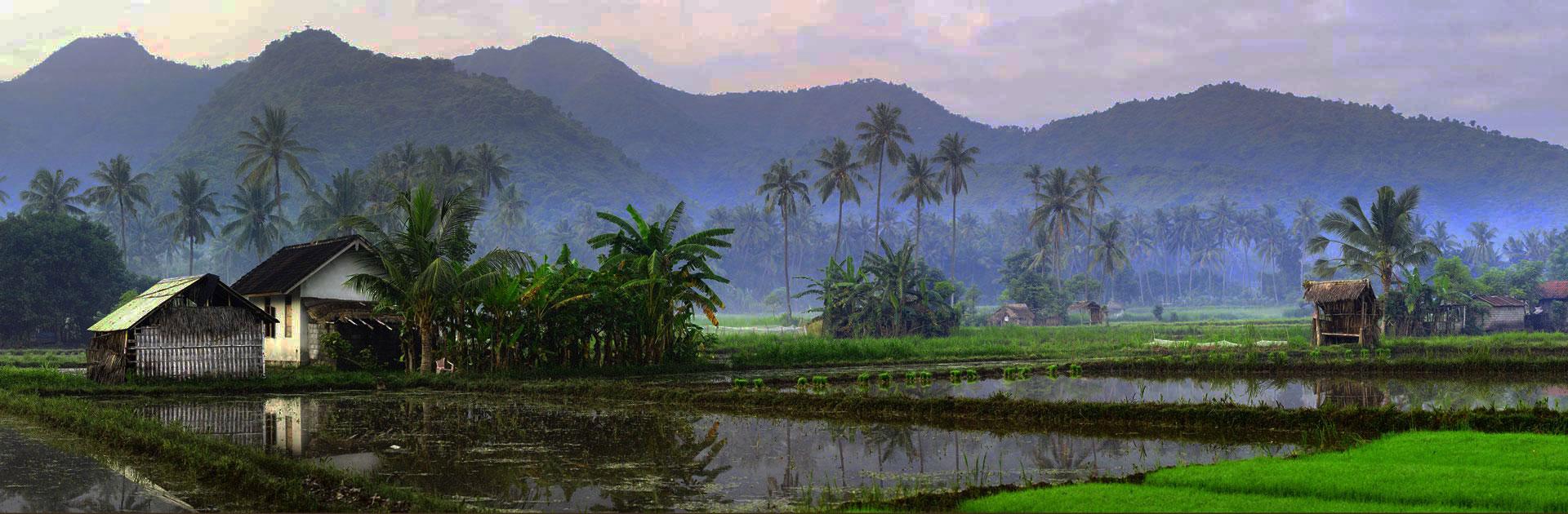 ID Esencia de Bali 11 días 3