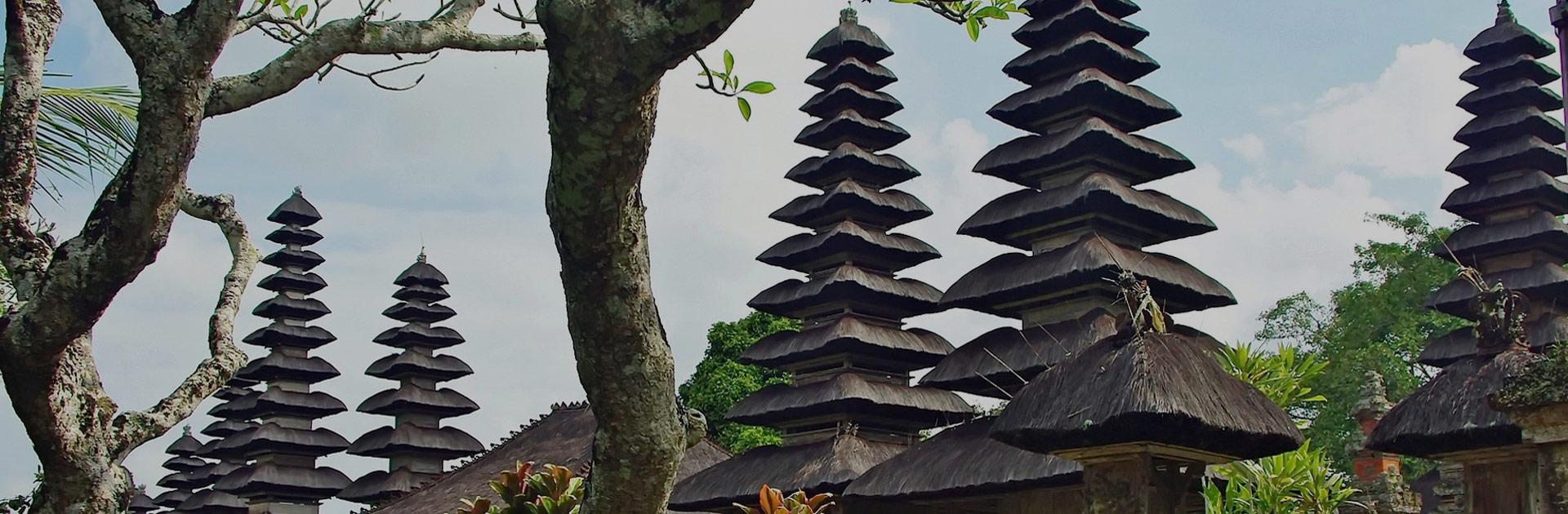 ID Bali Circuito Interior y Gili 5
