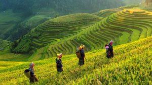 KHVN Vietnam y Camboya de Sapa a Siem Reap 16 días 1