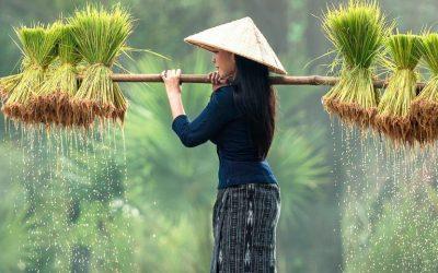 5 Cosas Que Ver en Laos