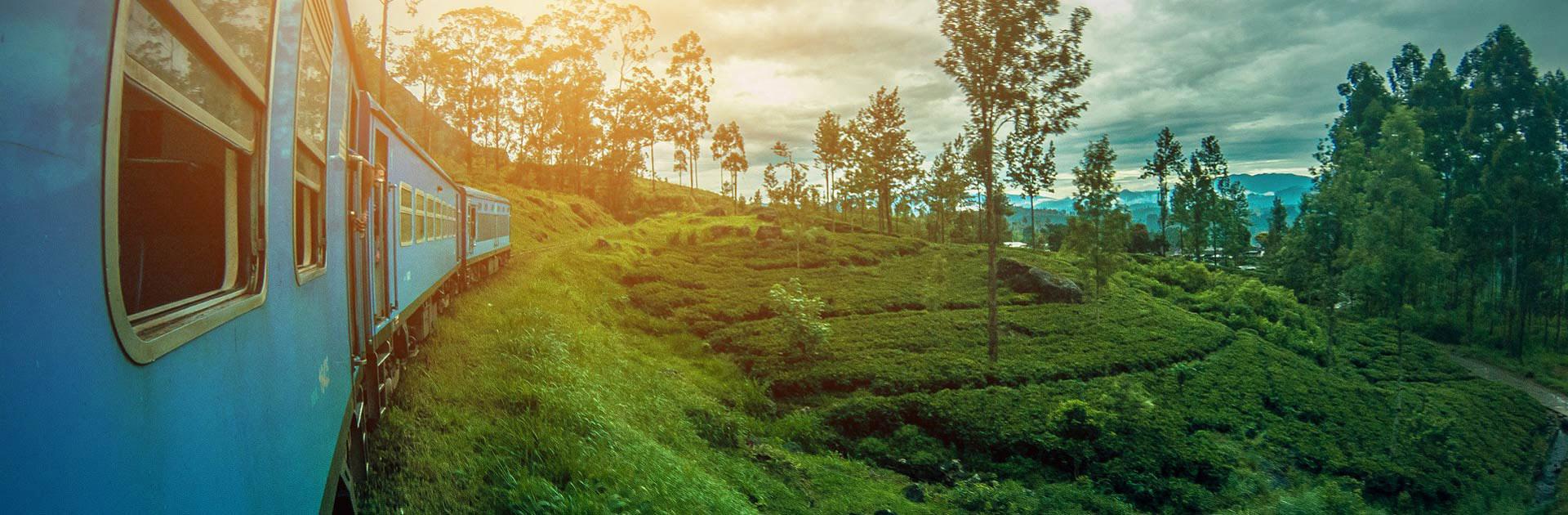LK Sri Lanka imprescindible y playas 11 días 3