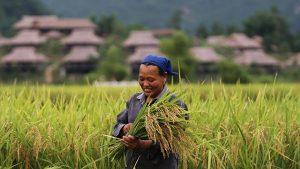 KHVN Descubriendo Vietnam y Camboya 15 días 1