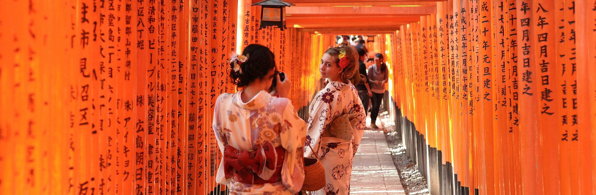 Japón Imprescindible 11 días 7