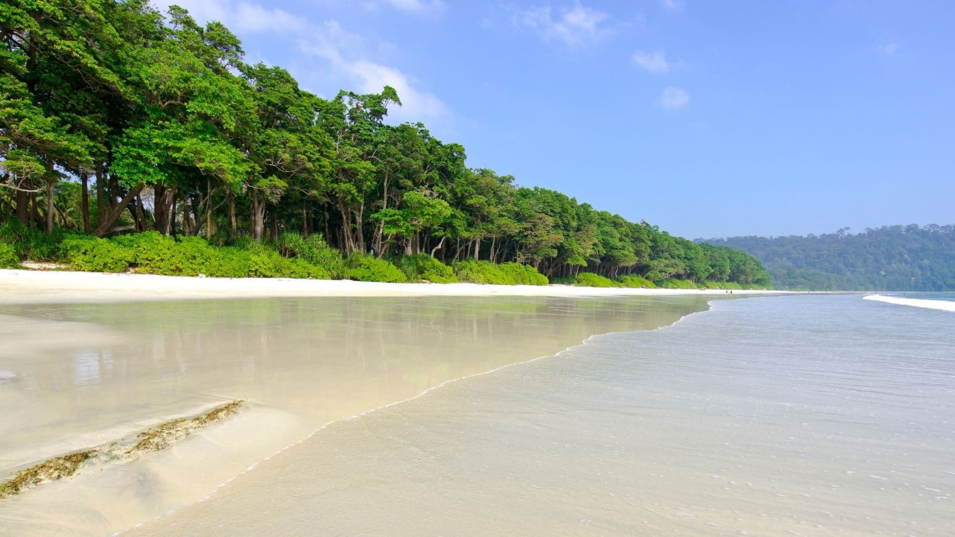 Playa paradisiaca de Asia en Isla Andamán: Havelock