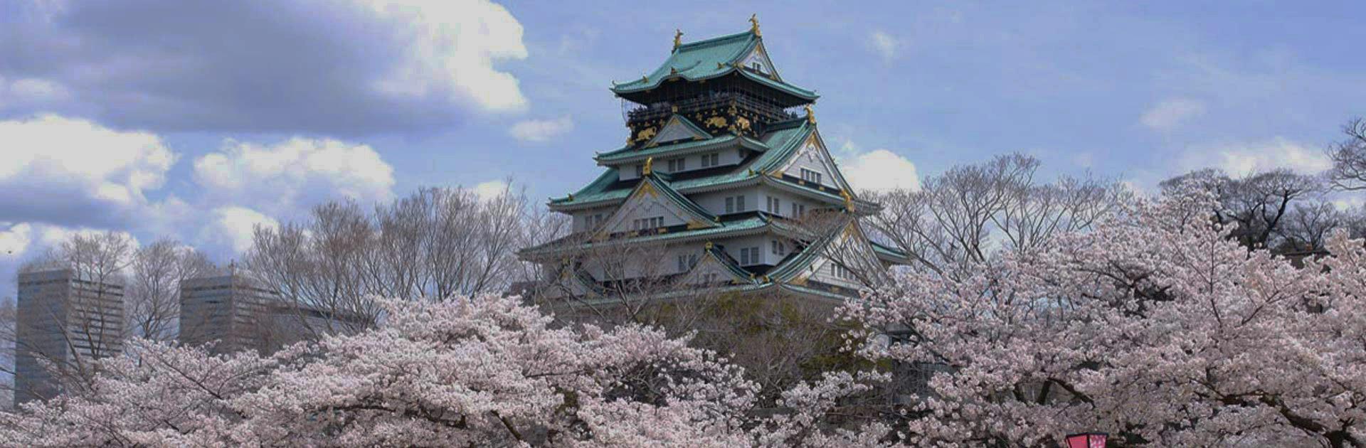 Semana Santa Konnichiwa Japón 8 días 4