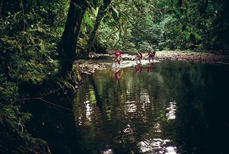 La misteriosa Kalimantan en Indonesia