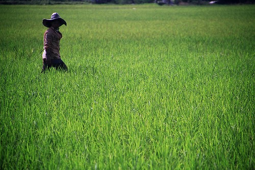 Indonesia: Más allá de Bali