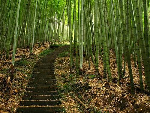 Tres Rincones Mágicos en el Norte de Taiwan
