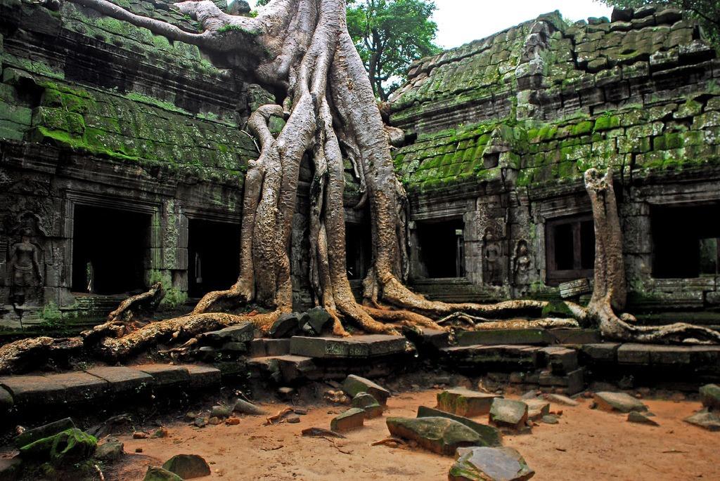 Angkor Wat: El abandono y la selva
