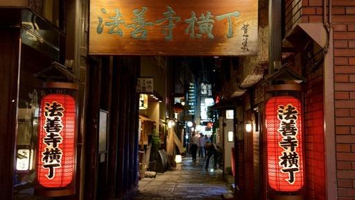Los callejones de Tokyo: Los Yokocho