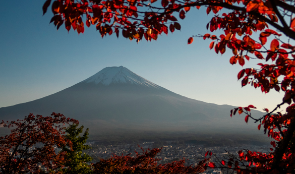 ¿Con qué combinar un viaje a Japón en 2020?