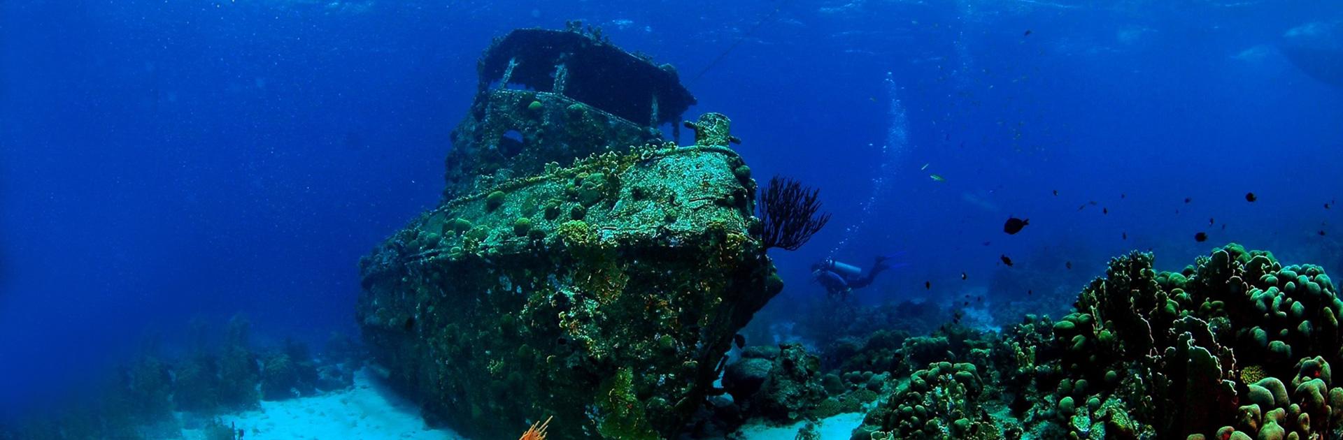 ID Bajo el Oceano Indico 1