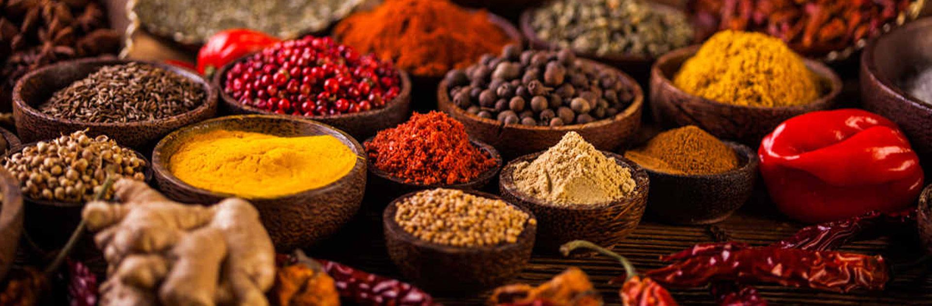 IN Exótica India del Sur 15 días 1