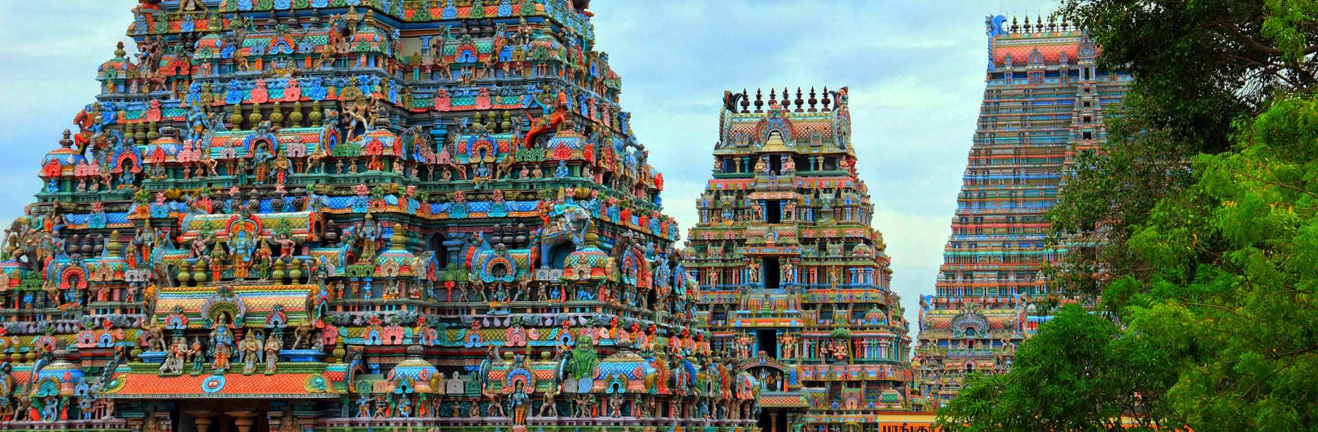 IN Exótica India del Sur 15 días 3