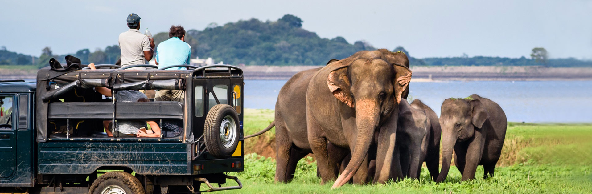 LK Explore Sri Lanka con playas Nordeste 12 días 4