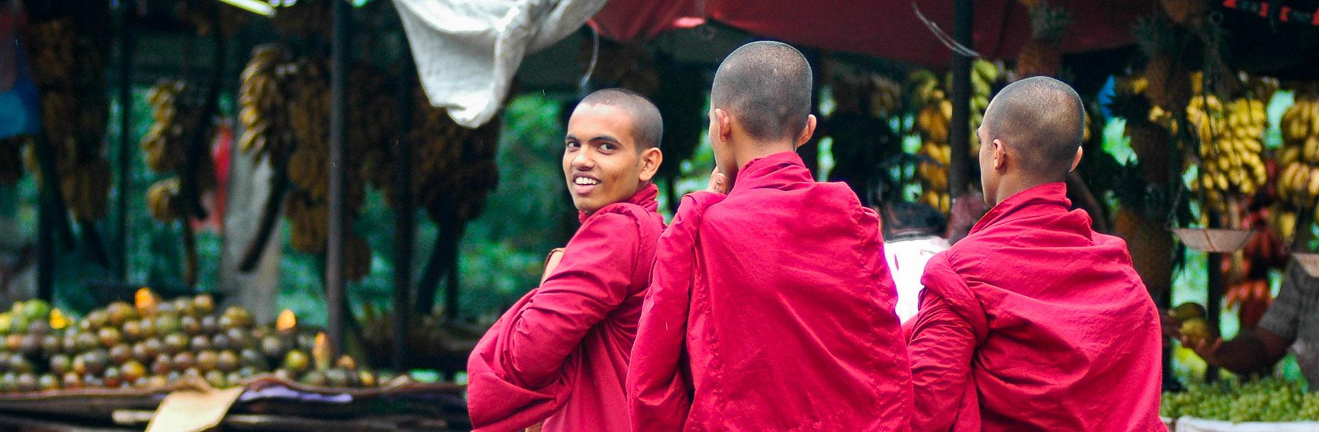 LK Gran Tour de Sri Lanka 14 días 2