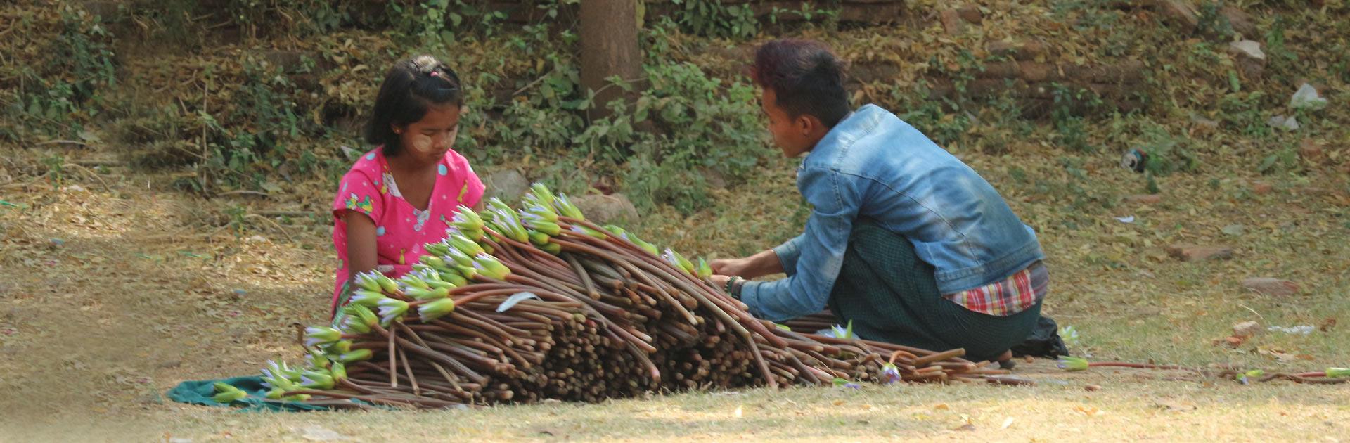 MM Encanto de Myanmar 12 días 4