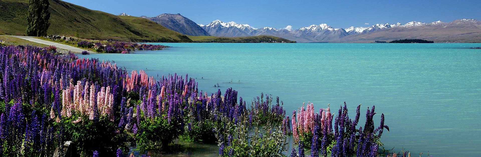 NZ Nueva Zelanda y Fiji 24 días 2