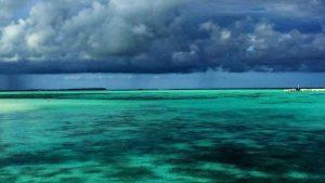Cocoon maldives may 2017 11