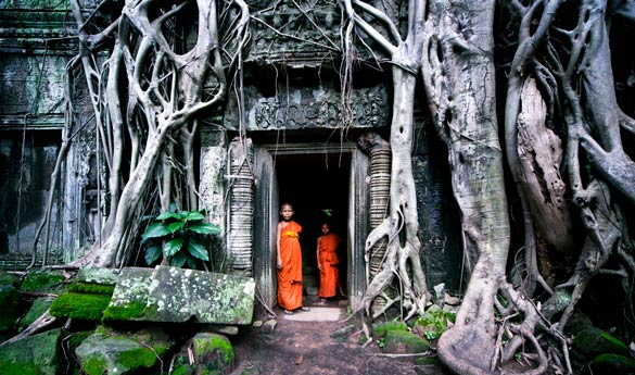 Siem Reap Ta Prohm