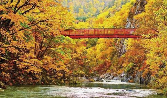 Otoño en Hokkaido y sus montañas cubiertas de colores otoñales