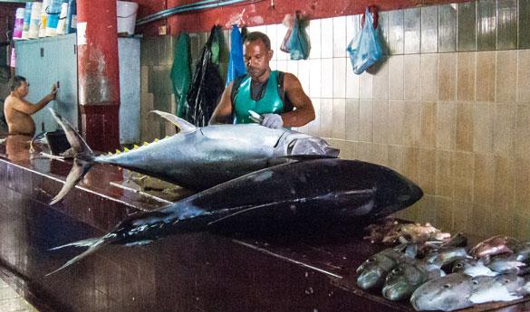 Los mercadillos de Malé en Maldivas