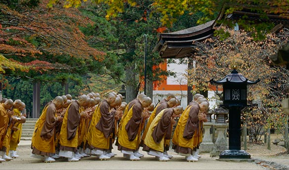 Visitar Koyasan en Japon