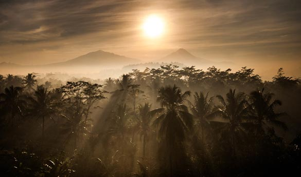 Volcan Java Indonesia