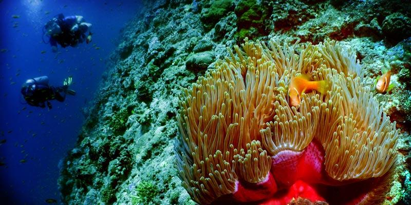 La isla Giraavaru en Maldivas