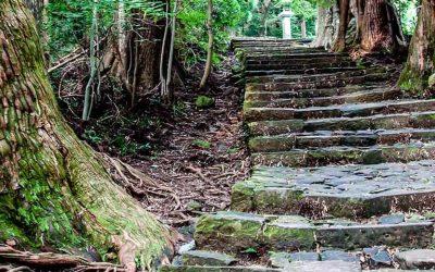 Descubre el camino de Kumano Kodo en un viaje espiritual a Japón