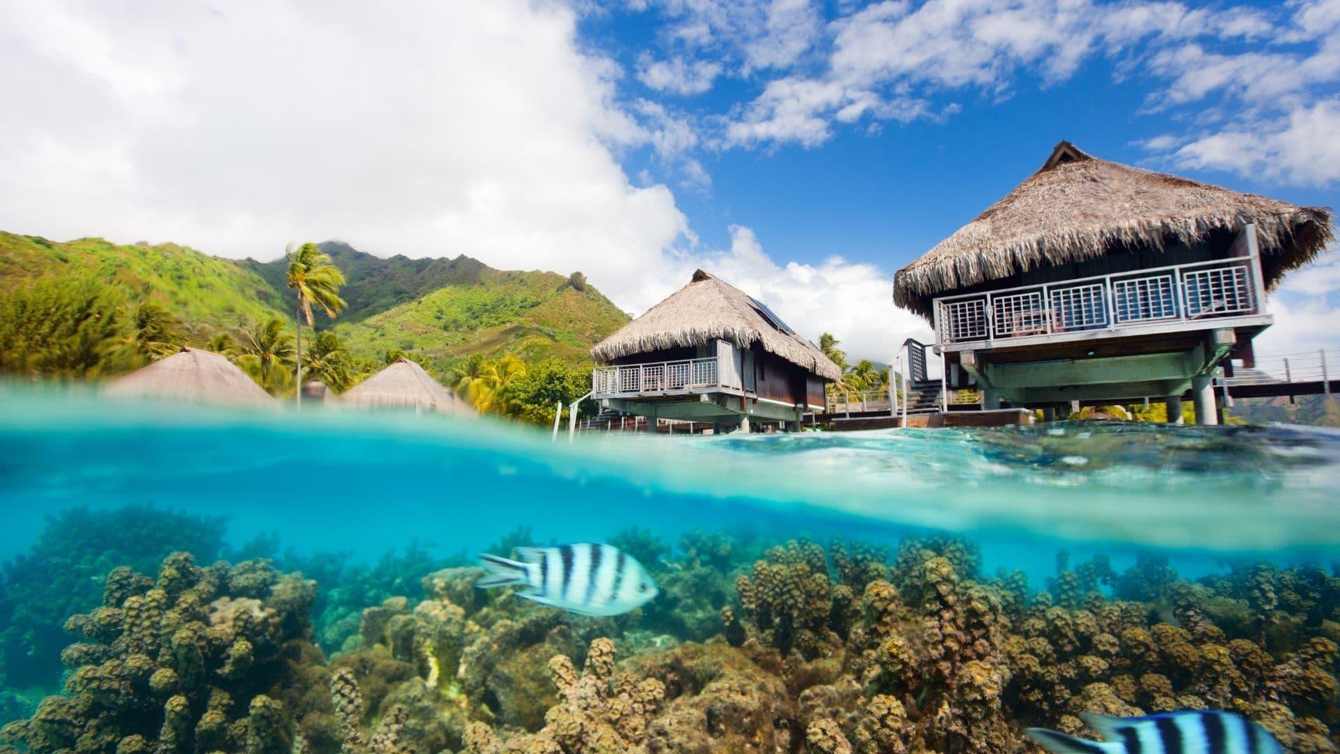 Moorea y Bora Bora son consideradas las islas mas románticas del mundo